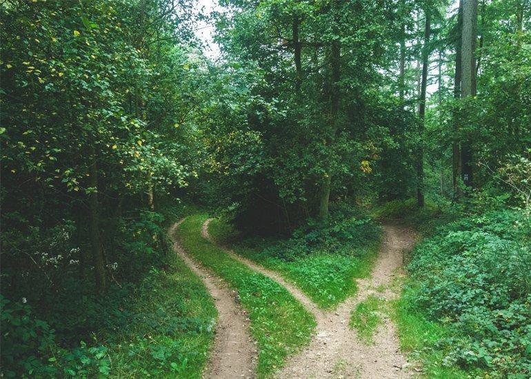 blog-buddhist-meditation